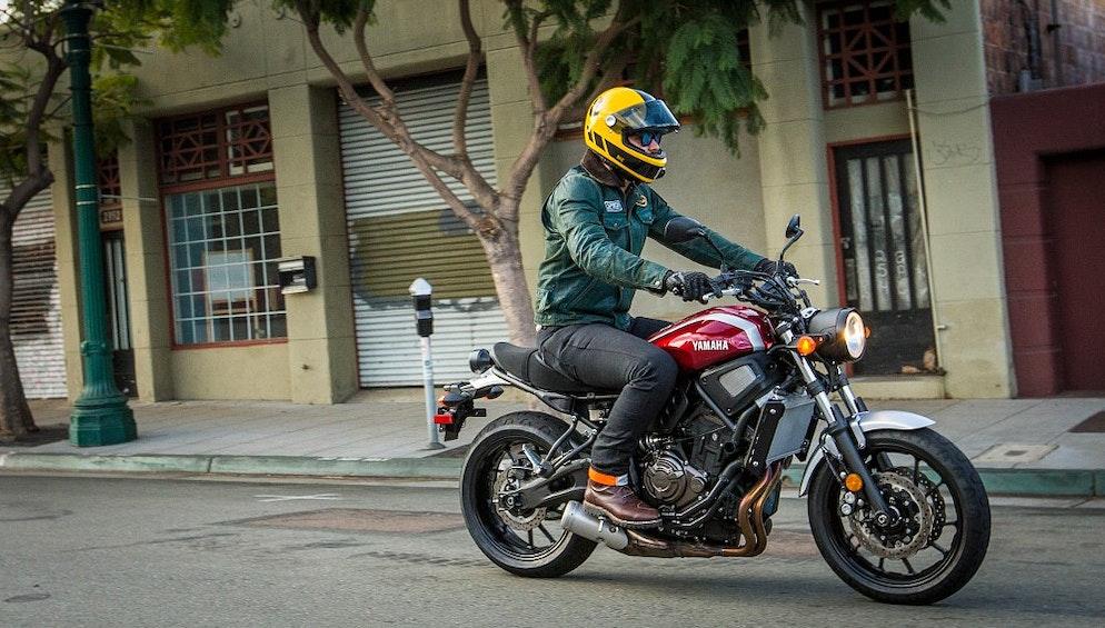 Teamzillas 2018 Moto Predictions Revzilla